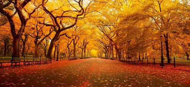 autunno-640x320